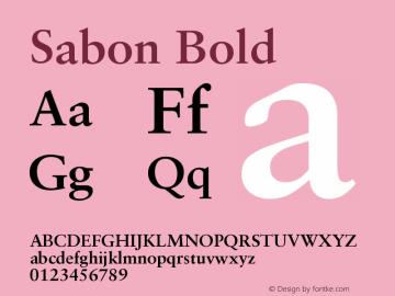 Sabon CE Bold Version 001.002图片样张