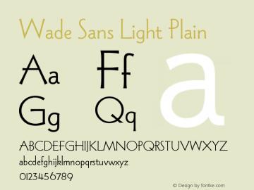 Wade Sans Light Plain Version 005.000图片样张