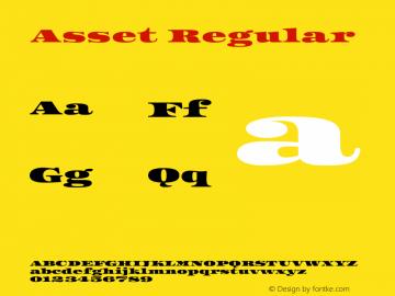 Asset Regular Version 1.002图片样张