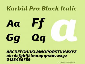 KarbidPro-BlackItalic Version 7.504; 2011; Build 1021图片样张