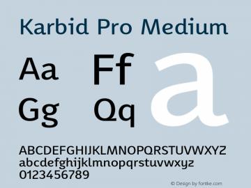 KarbidPro-Medium Version 7.504; 2011; Build 1021图片样张