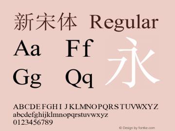 新宋体 汉字2.00 133252558 遵義漢文图片样张