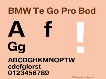 BMW Type Global Pro Bold Version 2.20图片样张