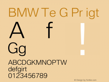 BMW Type Global Pro Light Version 2.20图片样张