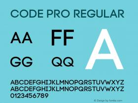 Code-Pro Version 1.003图片样张