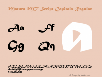 Matura MT Script Capitals Regular Version 1.00 - June 2001 Font Sample