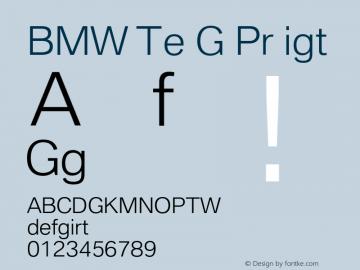 BMW Type Global Pro Light Version 2.20图片样张