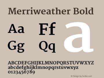 Merriweather Bold Version 1.003图片样张