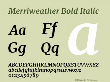 Merriweather Bold Italic Version 1.001图片样张