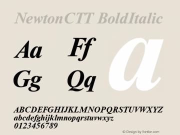 NewtonCTT BoldItalic TrueType Maker version 1.00.03图片样张