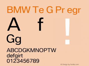 BMW Type Global Pro Regular Version 2.20图片样张