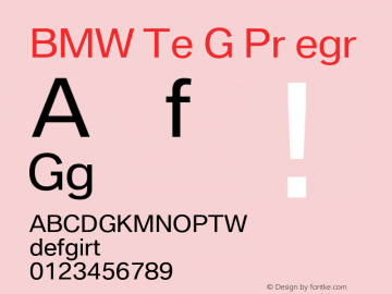 BMW Type Global Pro Regular Version 2.20图片样张
