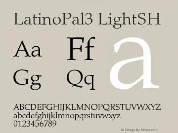 LatinoPal3 LightSH SoHo 1.0 9/30/93图片样张
