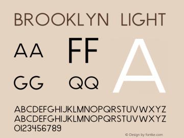 Brooklyn Light Version 1.000;PS 001.000;hotconv 1.0.88;makeotf.lib2.5.64775图片样张