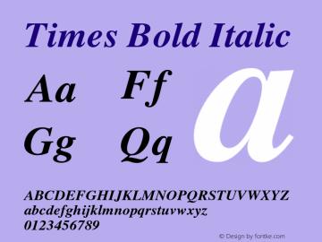 Times-BoldItalic 001.006图片样张