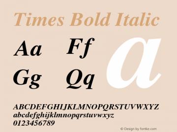 Times Bold Italic 3.5a3图片样张