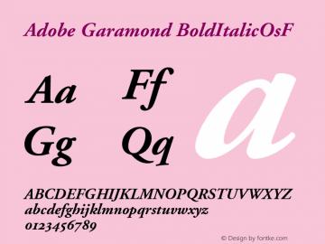 Adobe Garamond Bold Italic Oldstyle Figures Version 001.001 Font Sample