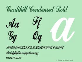 Cardihill-CondensedBold Version 1.000图片样张