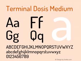 Terminal Dosis Medium Version 1.006图片样张