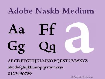 Adobe Naskh Font Family|Adobe Naskh-Uncategorized Typeface-Fontke com
