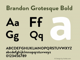 Brandon Grotesque Bold Regular Version 001.000图片样张