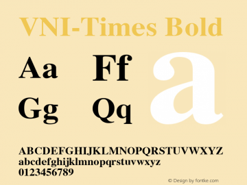 VNI-Times-Bold 1.0 Tue Jan 18 17:56:15 1994图片样张