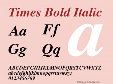 Times Bold Italic 图片样张