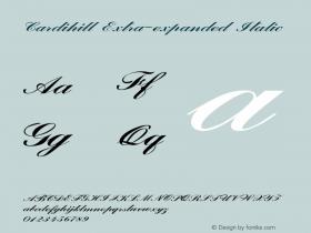 Cardihill-ExtraexpandedItalic Version 1.000图片样张