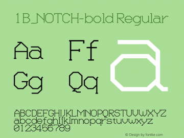 1B_NOTCH-bold 1.0W图片样张
