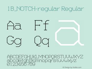 1B_NOTCH-regular 1.0W图片样张