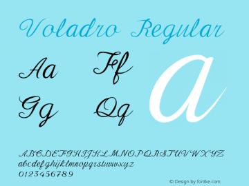 Voladro Version 1.000图片样张