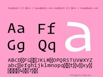 Copyright (C) H&Co | typography.com Version 1.200图片样张