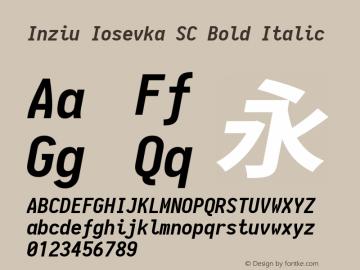 Inziu Iosevka SC Bold Italic Version 1.12.3图片样张