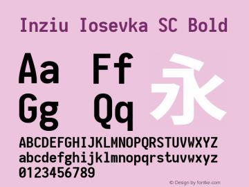 Inziu Iosevka SC Bold Version 1.12.3图片样张