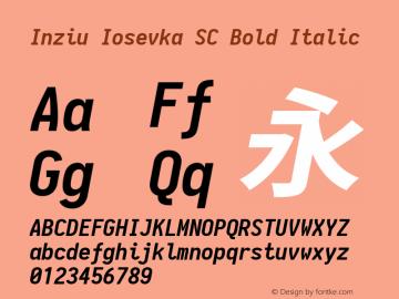 Inziu Iosevka SC Bold Italic Version 1.12.5图片样张