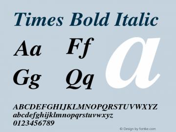 Times-BoldItalic 002.000图片样张