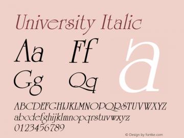 University Italic W.S.I. Int'l v1.1 for GSP: 6/20/95图片样张