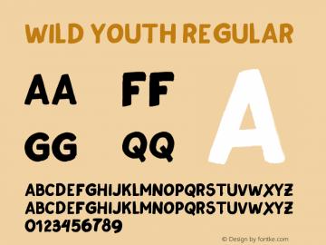 Wild Youth Version 1.000;PS 001.000;hotconv 1.0.70;makeotf.lib2.5.58329图片样张