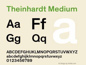 Theinhardt-Medium Version 3.001图片样张