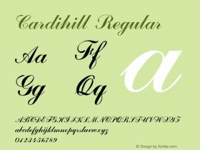 Cardihill Version 1.000图片样张