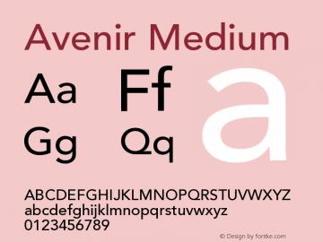 Avenir 65 Medium Version 001.001图片样张