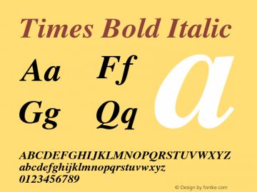 Times Bold Italic 3.0图片样张