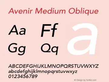 Avenir Medium Oblique 8.0d5e4图片样张