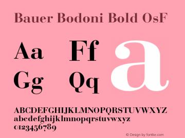 BauerBodoni-BoldOsF Version 001.003; t1 to otf conv图片样张