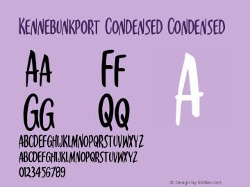 Kennebunkport Condensed Version 1.0; 2013图片样张