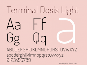 Terminal Dosis Light 图片样张