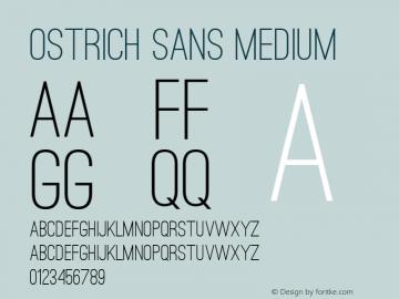Ostrich Sans Medium 图片样张