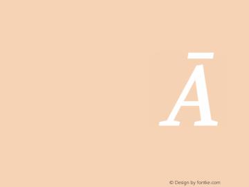 Manuale Medium Italic 图片样张