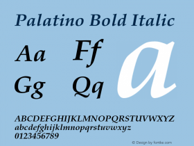 Palatino Bold Italic 001.005 Font Sample
