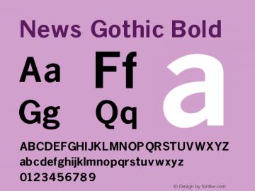 News Gothic Bold V1.00图片样张
